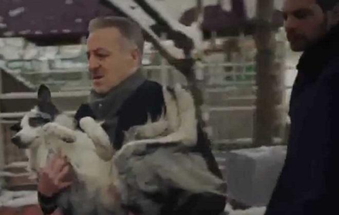 Photo of Paramparça'nın yapım şirketi sevimli köpek Jason'la ilgili hayvanseverlerin eleştirilerine ne cevap verdi?