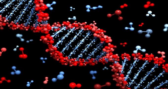 Photo of Kaliteli yaşam için gen şifreleri nasıl çözülür?