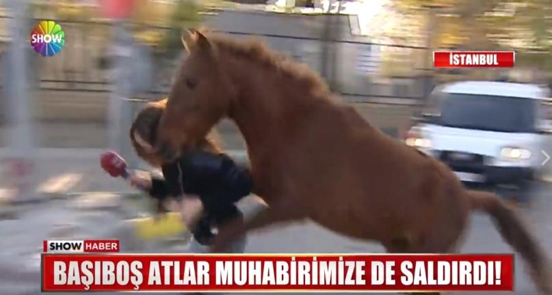 Photo of Saldırıya uğrayan Show TV muhabiri az daha atın altında kalıyordu