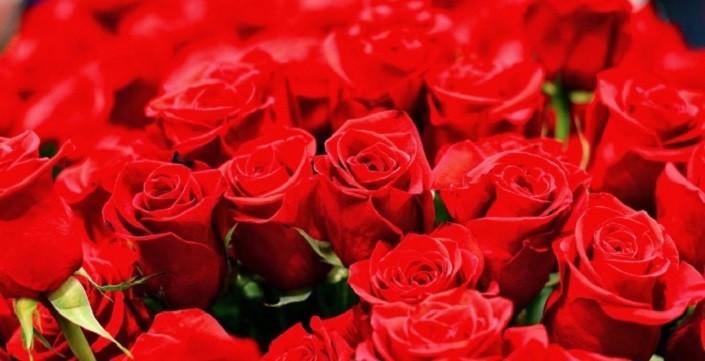Photo of 14 Şubat sevgililer günü mesajları, Sevgiliye özel hediyeler, aşk sözleri