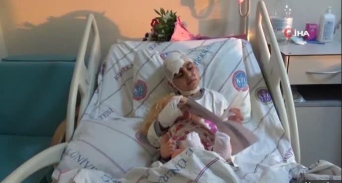 Photo of Pitbul vahşeti…Küçük kız çocuğunu hastanelik etti