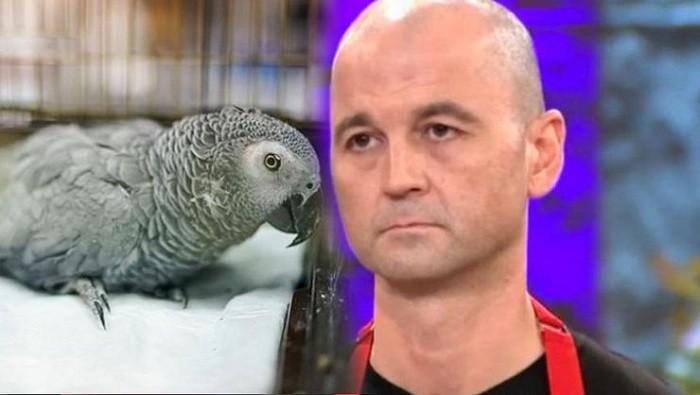 Photo of Ameliyata alınan papağanla ilgili şok gelişme… Papağan Bahtiyar Türkiye'yi üzdü